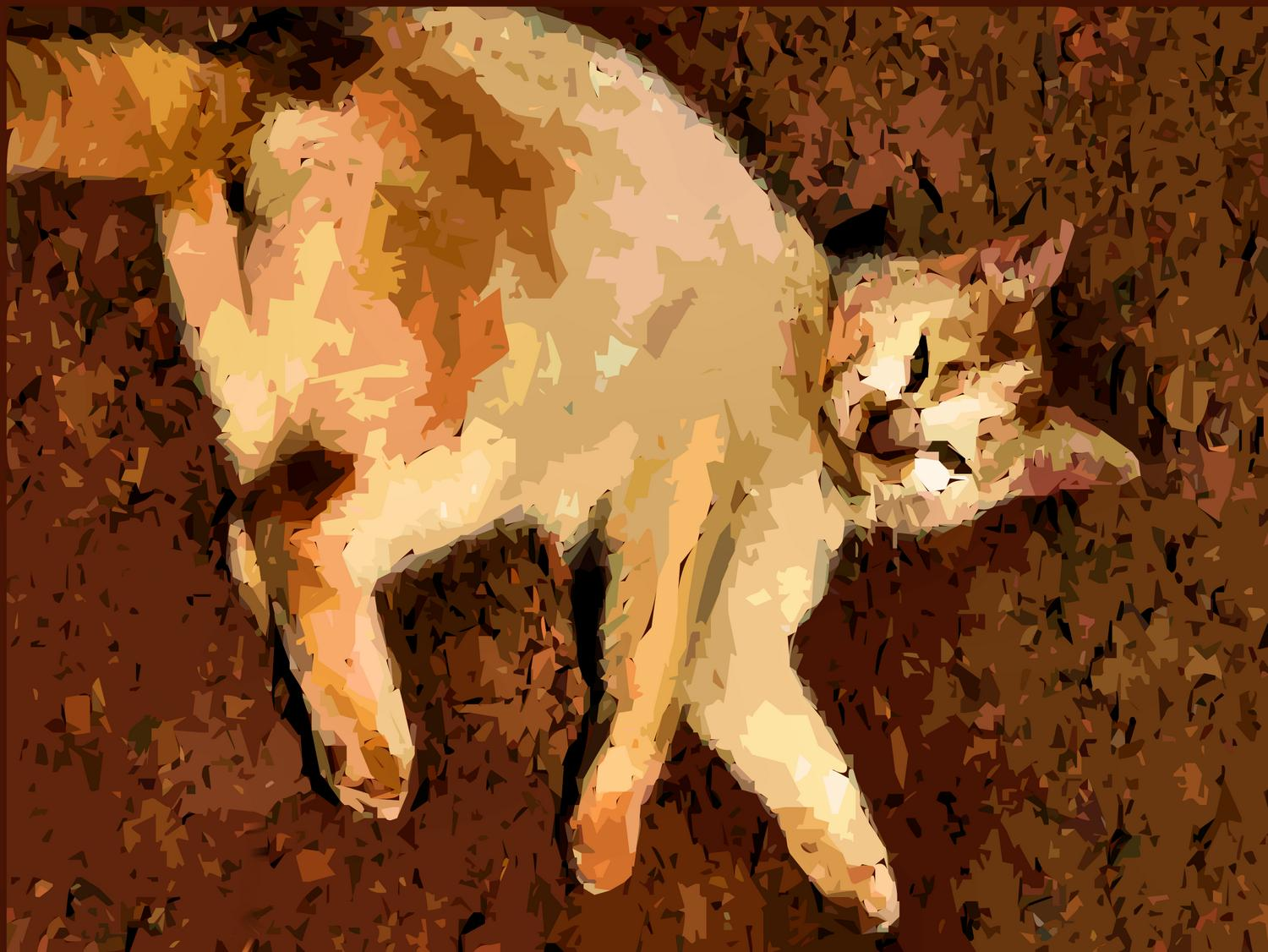 - Barn cat - Techno-Impressionist Museum - Techno-Impressionism - art - beautiful - photo photography picture - by Tony Karp